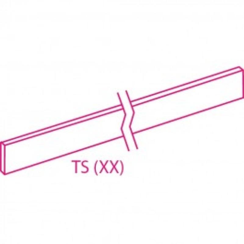 TSC65